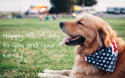 Don't let your pet become a 4th of July statistic!